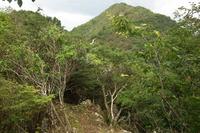 Mount Mitake (Hyōgo) photo