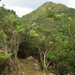Mount Mitake (Hyōgo)