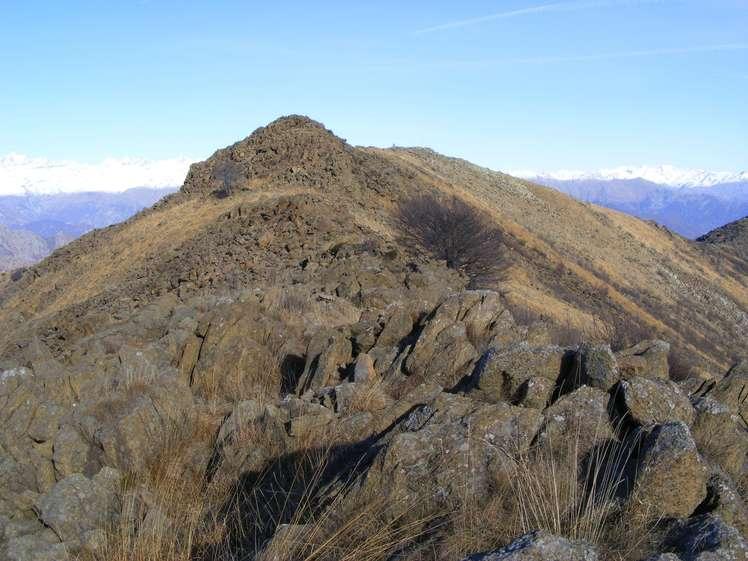 Monte Colombano weather