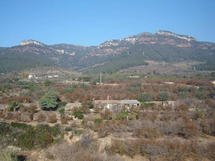 La Mussara (Vilaplana)