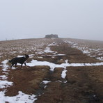 Great Shunner Fell