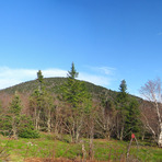 Thomas Cole Mountain