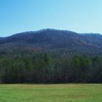 Taylor Ridge (Georgia)