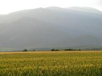 Mount Paiko photo