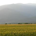 Mount Paiko