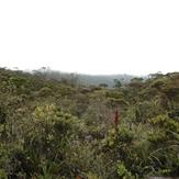 Mount Murud Sarawak