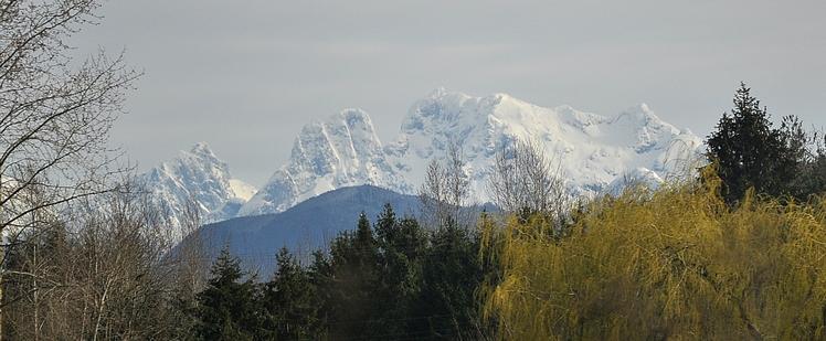 Mount Robie Reid weather