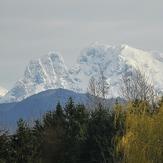 Mount Robie Reid