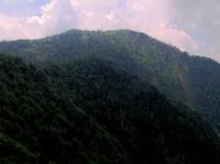 Mount Kephart photo