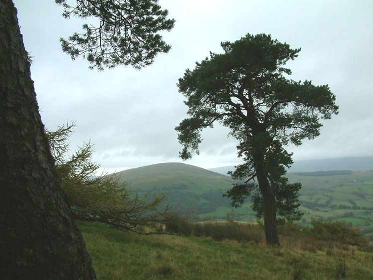 Little Mell Fell weather