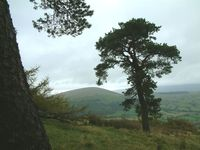 Little Mell Fell photo