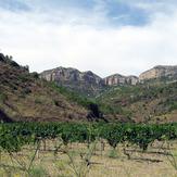 Montsant