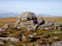 Ward's Stone photo