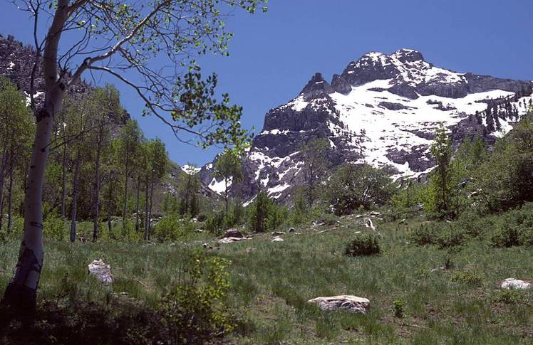 Mount Gilbert (Nevada)