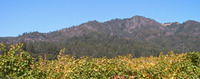 Hood Mountain photo