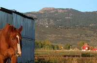 Horsetooth Mountain photo