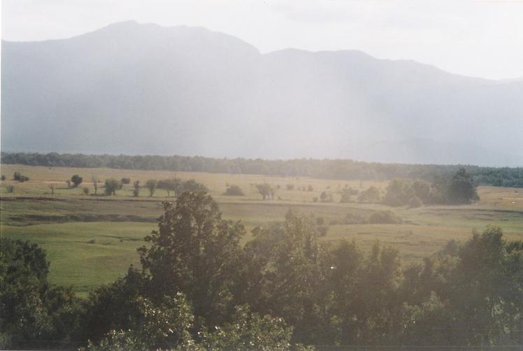 Troglav