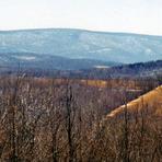 Wills Mountain