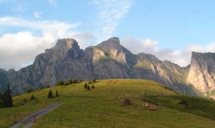Alvier (mountain)