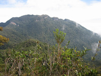 Gunung Tahan photo