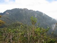 Gunung Tahan photo