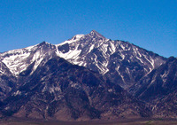 Mount Williamson photo