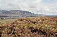Þórólfsfell photo
