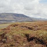 Þórólfsfell