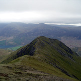 Whiteless Pike