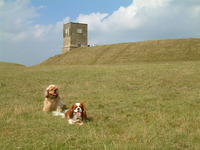 Bredon Hill photo
