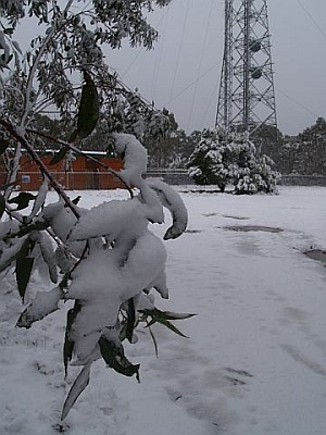 Mount Trickett (New South Wales) weather