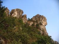 Lion Rock photo