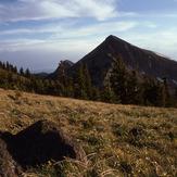 Mount Doane