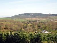 Carrick Mountain photo
