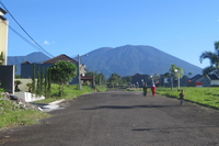 Mount Gede photo