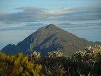 Pico Naiguatá photo