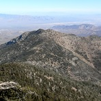 Harris Mountain (Nevada)