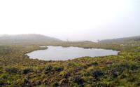 Mount Waialeale photo