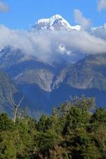 Mount Tasman photo