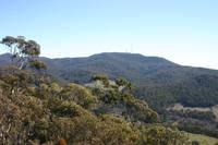 Mount Canobolas photo
