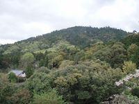Mount Miwa photo