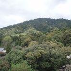 Mount Miwa