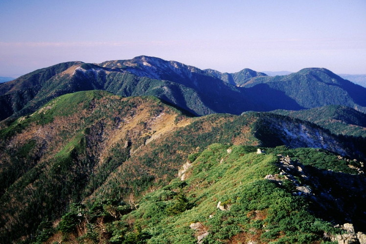 Mount Tekari weather