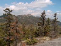 Mount Cardigan photo