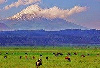 Little Ararat photo