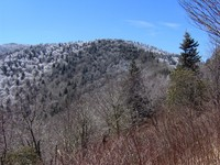 Old Black (Great Smoky Mountains) photo