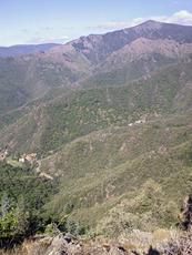 Mont Aigoual photo