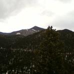 Mount Rosa (Colorado)