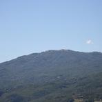Monte Pelpi (Emilia Romagna)