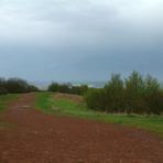 Walton Hill